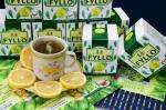 FYLLO OPAL GREEN TEA